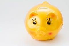 La Banca Piggy gialla Immagini Stock Libere da Diritti