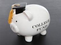 La Banca Piggy per l'istituto universitario Fotografia Stock
