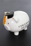 La Banca Piggy per l'istituto universitario Immagini Stock