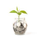 La Banca, porcellino salvadanaio, soldi, monete Immagini Stock