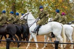 La banda de la caballería del hogar imágenes de archivo libres de regalías