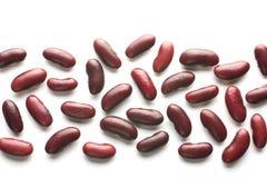 La bande des haricots rouges Photo libre de droits