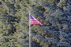 La bandera americana Foto de archivo libre de regalías