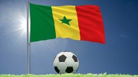 La bandera de agitar de Senegal y de un fútbol rueda en el césped, 3d representación, cantidad 4k metrajes