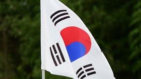 La bandera de la Corea del Sur agita en el viento en la cámara lenta almacen de metraje de vídeo