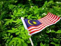La bandera de Malasia en un fondo natural imagen de archivo libre de regalías