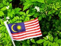 La bandera de Malasia en un fondo natural fotos de archivo libres de regalías