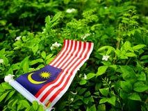 La bandera de Malasia en un fondo natural imagenes de archivo
