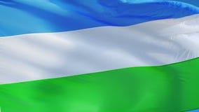La bandera de Molossia en la cámara lenta inconsútil colocó con alfa ilustración del vector