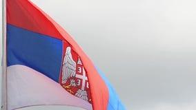 La bandera de Serbia agita en el viento en la cámara lenta almacen de video