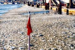 La bandera del transbordador Fotos de archivo