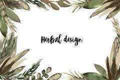 La bandera herbaria, sale de la acuarela para el balneario, salón de belleza, tienda orgánica, cosmético natural stock de ilustración