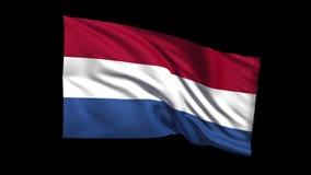 La bandera holandesa de colocación inconsútil que agita en viento de t Republiche, canal alfa es incluida almacen de metraje de vídeo