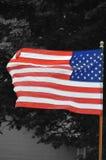 La bandiera Immagini Stock Libere da Diritti