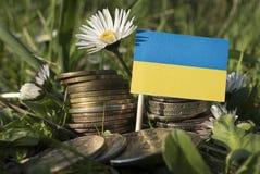 La bandiera dell'Ucraina con la pila di soldi conia con erba Fotografia Stock Libera da Diritti