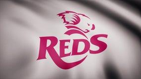 La bandiera di rossi di rugby sta ondeggiando su fondo trasparente Primo piano della bandiera d'ondeggiamento con il logo del clu illustrazione di stock