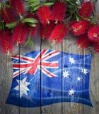 La bandierina australiana fiorisce la priorità bassa Immagine Stock Libera da Diritti