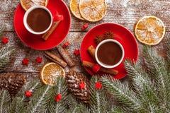 La bannière horizontale d'automne avec les feuilles jaunes, de rouge, les potirons, la tasse de café et le guelder s'est levée su Image stock