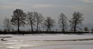La banque du fleuve Vistule images stock
