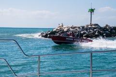 La barca dello sceriffo della contea di Orange che accelera dopo un molo della roccia immagini stock