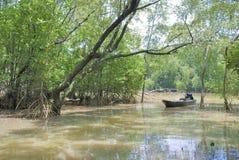 La barca locale del pescatore nella mangrovia Fotografia Stock Libera da Diritti
