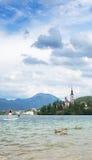 La barca turistica con l'isola Bled, con la parte posteriore della chiesa del presupposto, ha sanguinato, la Slovenia Fotografie Stock