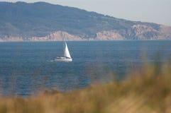 La barca a vela naviga vicino alla costa della California del Nord con erba nella priorità alta fotografie stock