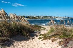 La Barra Beach nära Punta del Este i Uruguay Arkivfoton