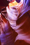 La barranca del antílope foto de archivo