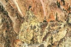 La barranca magnífica de Yellowstone Fotos de archivo libres de regalías