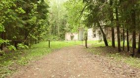 La barrera a los niños acampa en el tiro constante liso y lento del bosque de la leva metrajes