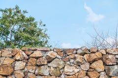 La barrière en pierre de brique de plan rapproché avec l'arbre et le ciel bleu brouillés a donné au fond une consistance rugueuse Photos stock