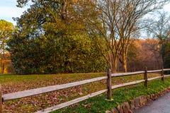La barrière et l'arbre dans Lullwater se garent, Atlanta, Etats-Unis Image libre de droits