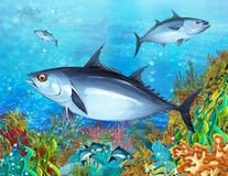 La barriera corallina - illustrazione per i bambini illustrazione di stock
