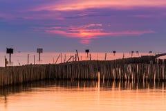 La barriera di bambù per protegge la spiaggia, Tailandia Fotografie Stock Libere da Diritti