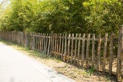 La barrière en bois, feuilles de bambou Photos stock