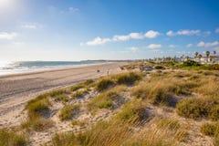 La Barrosa Beach of Chiclana de la Frontera in Cadiz. La Barrosa Beach in Chiclana de la Frontera, one of the most famous and large beaches in Cadiz Andalusia stock photo