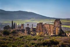 La basilica di Volubilis fotografie stock