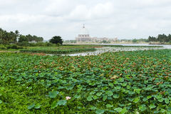 La basilique de notre Madame de paix, Yamoussoukro Photo libre de droits