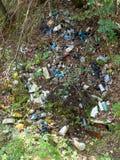 La basura plástica del metal y del vidrio dispersó en el bosque Foto de archivo