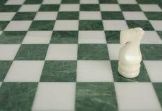 La battaglia è conclusa - cavallo di scacchi da solo fotografia stock