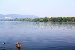 La beauté d'automne de Xihu, lac occidental Photos stock
