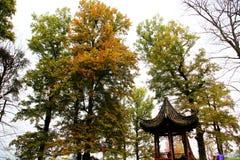 La beauté d'automne de Xihu, lac occidental Photos libres de droits