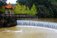 La beauté d'automne du Ginkgo Biloba dans la ville de Nanxing Images stock