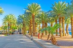 La beauté d'Eilat Photos stock