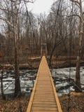 La beauté d'un pont suspendu Image libre de droits