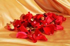 La beauté de l'amour, symboles Photographie stock