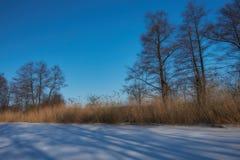 La beauté de l'hiver image libre de droits