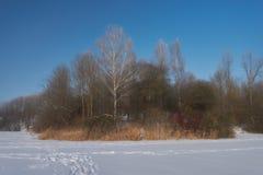 La beauté de l'hiver photo libre de droits