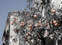 La beauté de la côte d'Amalfi Images stock